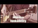 Absurdcus funkadelity feat my oldschool Jolana Alexis Super 2 bass