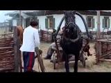 Тихий Дон 7-8-9 серия