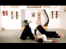 How to Do Shihonage Aikido Lessons