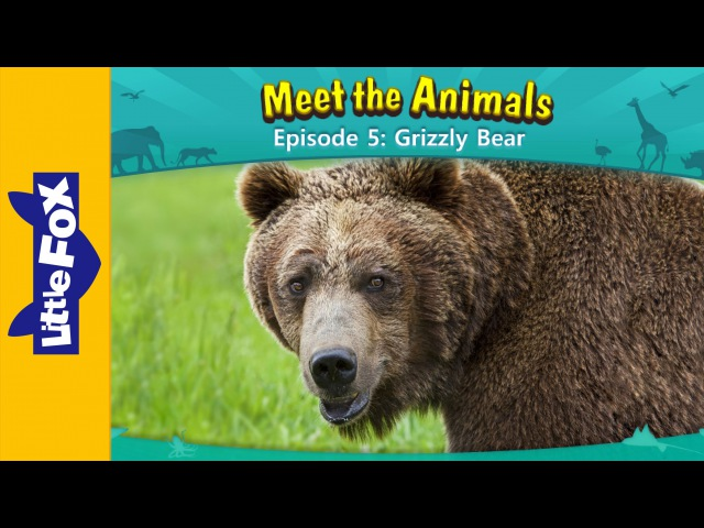 Meet the Animals 5: Grizzly Bear   Level 2   By Little Fox
