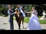 Свадьба под музыку Татьяна Пискарева - Обручальных колец золото. Picrolla