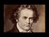 L. van Beethoven - Concerto n. 2 per pianoforte e orchestra Op. 19