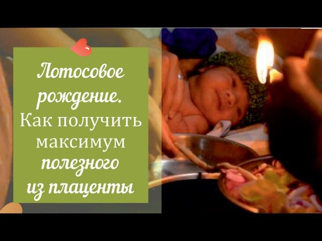 Лотосовое рождение - эзотерика или физиологическая необходимость? - Мария Коноваленкова
