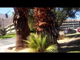 США. Прогулка по Палм-Спрингс (Часть вторая)