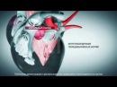 M021 - Недостаточность клапана аорты - этиология и патогенез сокращенное демо