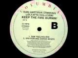 Dan Hartman Starring Loleatta Holloway - Keep The Fire Burnin' (SFB Feeling Mix)