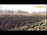 Охота на зайца с гончими Охотничьи истории
