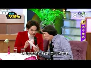 видео взято у 汪星物語momo
