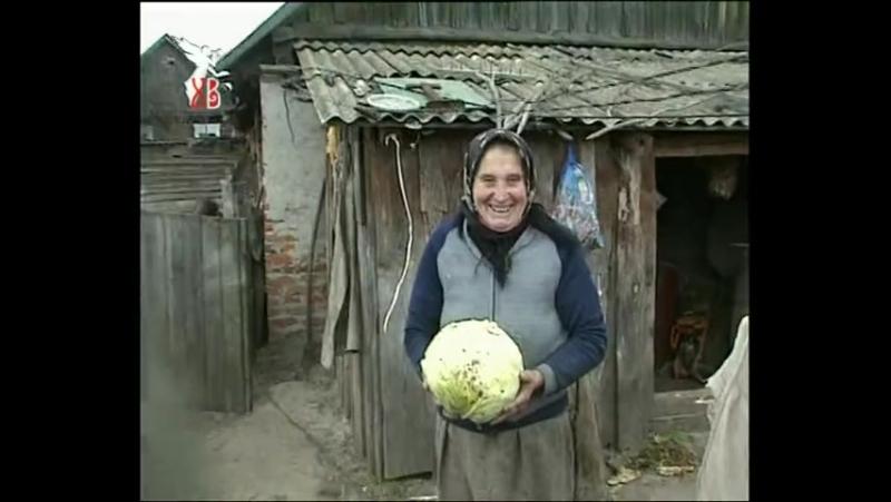 Самосёлы (2006)