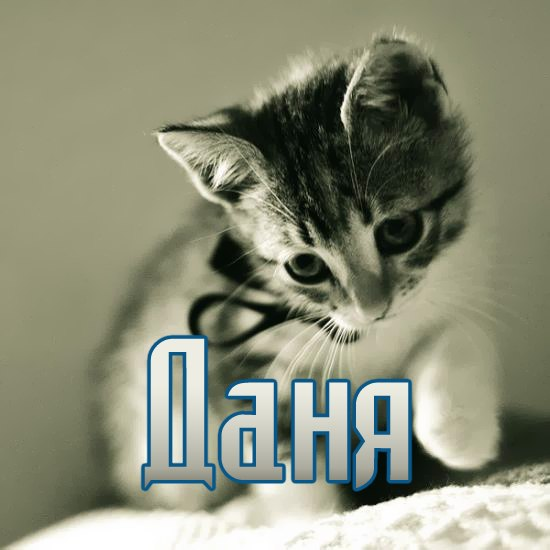 картинки с именем даня
