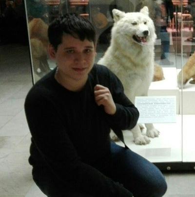 Игорь Пегишев