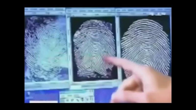 Биометрические паспорта - назад возврата нет(Олег Щербанюк)
