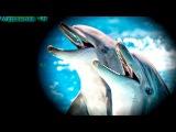 Про динозавров. Подзорная труба и ДИНОЗАВРЫ. Мультфильмы для детей Мурзилка ТВ