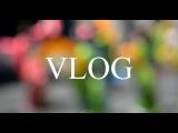 Vlog мою посуду / комментарий дня / выбираю подарок на мой ДР / и многое другое.