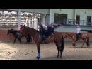 Джигитовка. Урок 6. Казачий обрыв Djigitovka. Lesson 6. Cossack break off