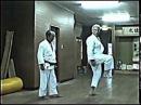 Yoshimitsu Akamine - Shorin Ryu Matsumura Seito Karate Do Hozon Kai