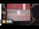 American Beauty (1999)  Plastic Bag Scene