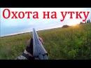 Охота на утку и разведка охотхозяйства - видео отчет.