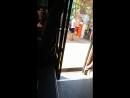 В Сочи в автобусе у девушки цыгане вытащили кошелёк