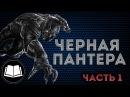 Черная Пантера/Black Panther Биография. Часть 1