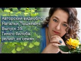 Авторский видеоблог Натальи Тышкевич. Выпуск 35. Гинкго билоба реликт из семян