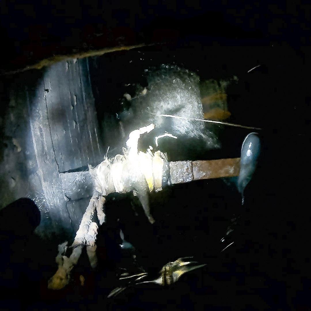 Дождевая канализация Солнцево. Диггеры UnderWorld