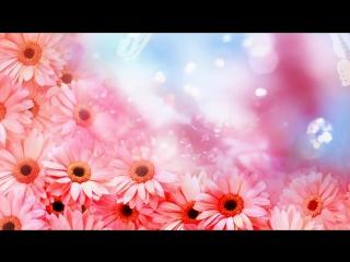 Футаж с цветами