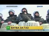 Троих участников цыганского бунта под Тулой отправили под арест