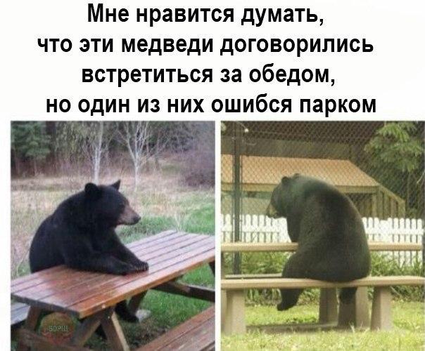 http://cs633126.vk.me/v633126918/1e956/NCSmqvulA_k.jpg