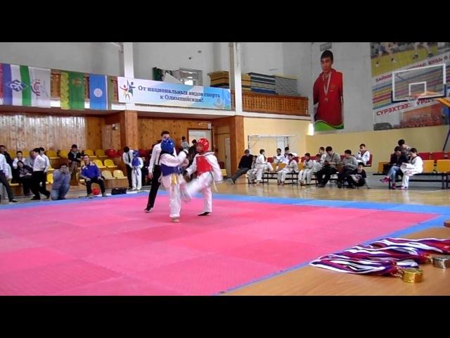 Открытый турнир по тхэквондо (ВТФ) на призы ЗАО Хангаласский газстрой 10