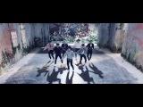 I NEED U (Japanese Ver.) / 防弾少年団 (Official MV)