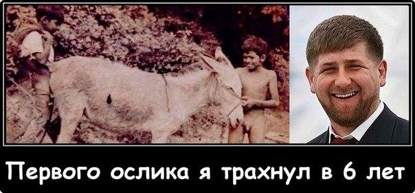 """""""Не нужны никакие митинги"""", - Кадыров просит не уговаривать его остаться у власти - Цензор.НЕТ 7664"""