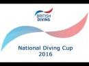 National Diving Cup 2016 - Men's 10m Platform Winner (Tom Daley)