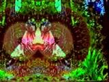 VHS-Visions of Genesis Breyer P-Orridge Kaleidoskoped