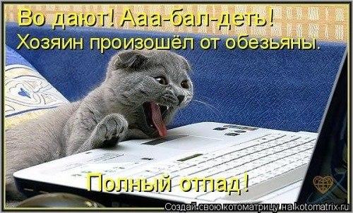 https://pp.vk.me/c633128/v633128702/1cb7a/CiQxcueUXuo.jpg