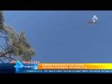 Боевики выложили в Сеть запись расстрела в воздухе летчиков российского Су 24