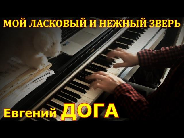 Мой ласковый и нежный зверь - Евгений Дога