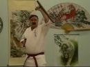 NINDO RYU KOBUJUTSU-TONFA UKE WAZA [BLOCKING TECHNIQUES] Part 3 W/ KENPOJOE