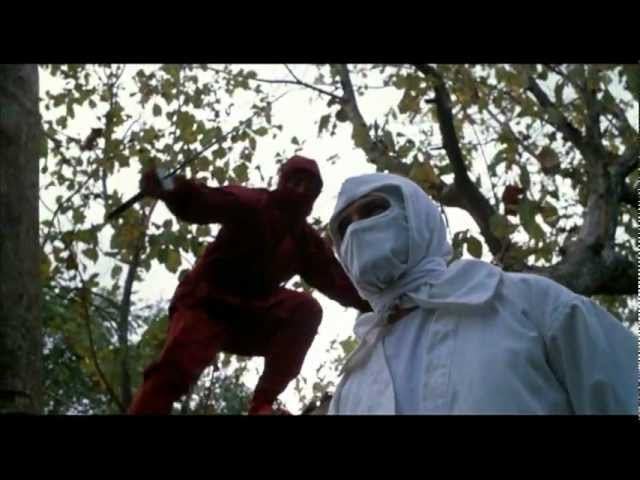 ENTER THE NINJA (1981) Original Theatrical Trailer (Widescreen)