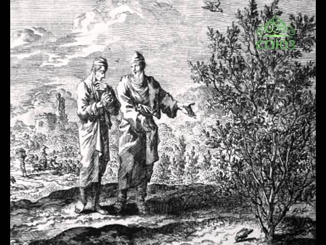 О Пророке Иеремия. О смоковнице. Союз онлайн: Есть что сказать. Эфир от 25 апреля