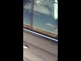 EXO apparat+Toyota avalon+ashgabat