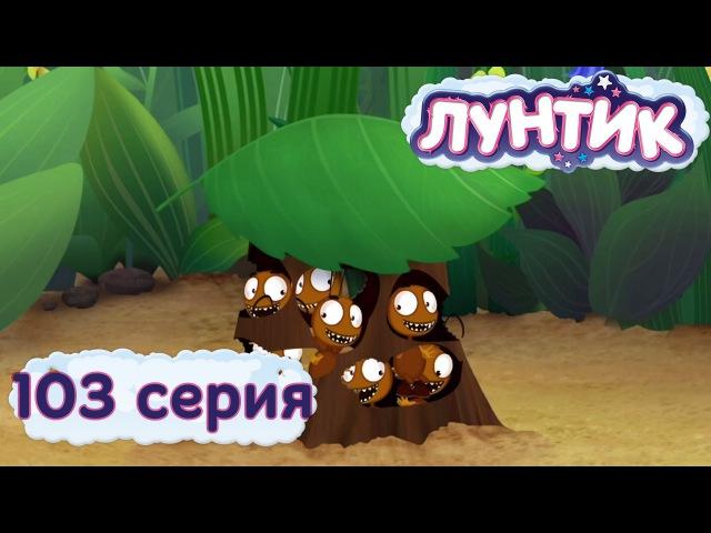 Лунтик и его друзья - 103 серия. Букашки