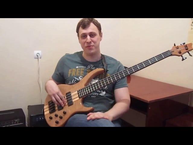 Уроки игры на бас гитаре Урок № 1 Особенности звукоизвлечения