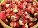 Варенье из лесной клубники Мамулины рецепты
