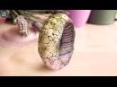 Полимерная глина - БРАСЛЕТ - Необычная пенная поверхность (Светлана Няшина)
