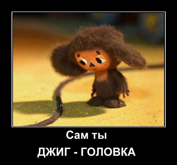 http://cs633130.vk.me/v633130771/a0/XxO-uY0gizM.jpg