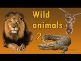 Английский для детей. Животные на английском языке.(дикие животные 2).1