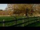 Замок Бландингс 2 сезон 7 серия из 7