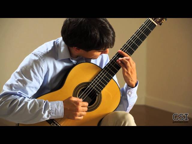 Barrios Vals Op. 8, No 3 played by Andras Csaki