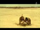 Smeshnaya reklama limonada v Afrike _.360